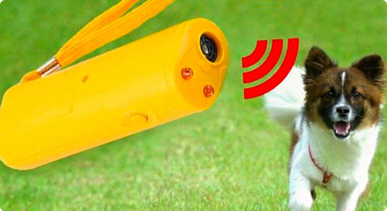 device to stop dog barking